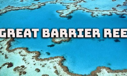 Great Barrier Reef | One of the seven wonders of the natural world