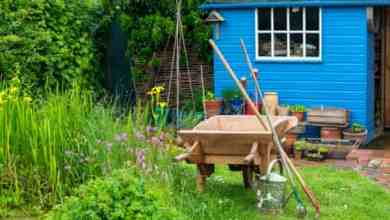 Photo of Garden insurance: why your home policy may not cover you