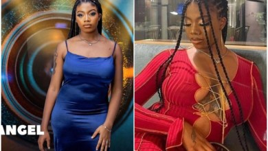 Photo of Adult only: Moment Angel was seen fingering herself on Live TV in ongoing BBNaija, see reactions (Watch)