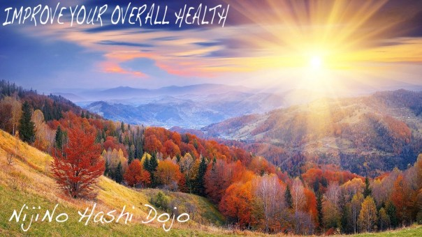 Niji No Hashi Dojo- Martial Arts, Cary, Morrisville, NC improve-your-overall-health