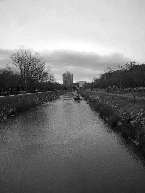 Obras de renaturalización del río 2. 2017.