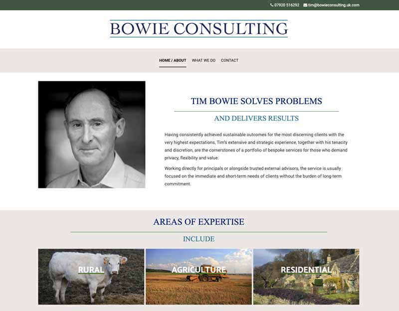 New website for Bowie Consulting