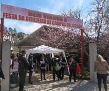 桜まつり会場の入り口