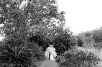 NIKKI BLADES PHOTOGRAPHY - Sunshine Coast Wedding Photographer