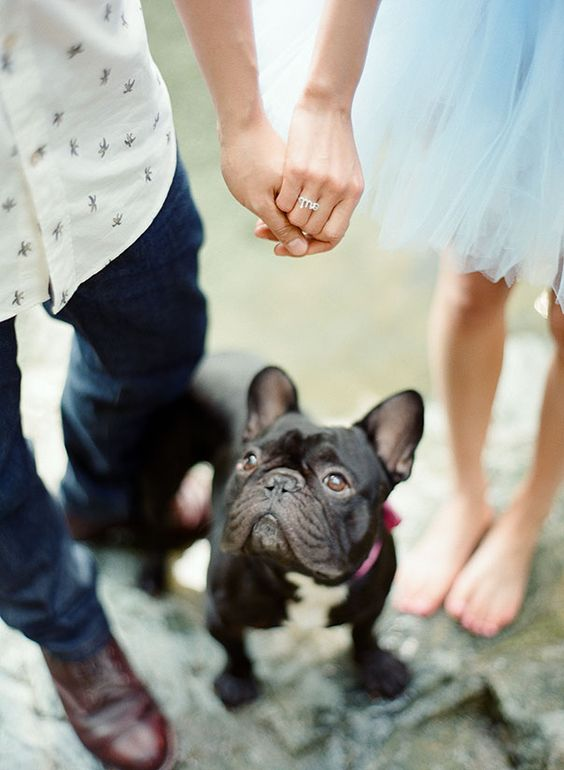 Women want the perfect proposal, it's the start of the rest of your lives together, so it's important to get it right