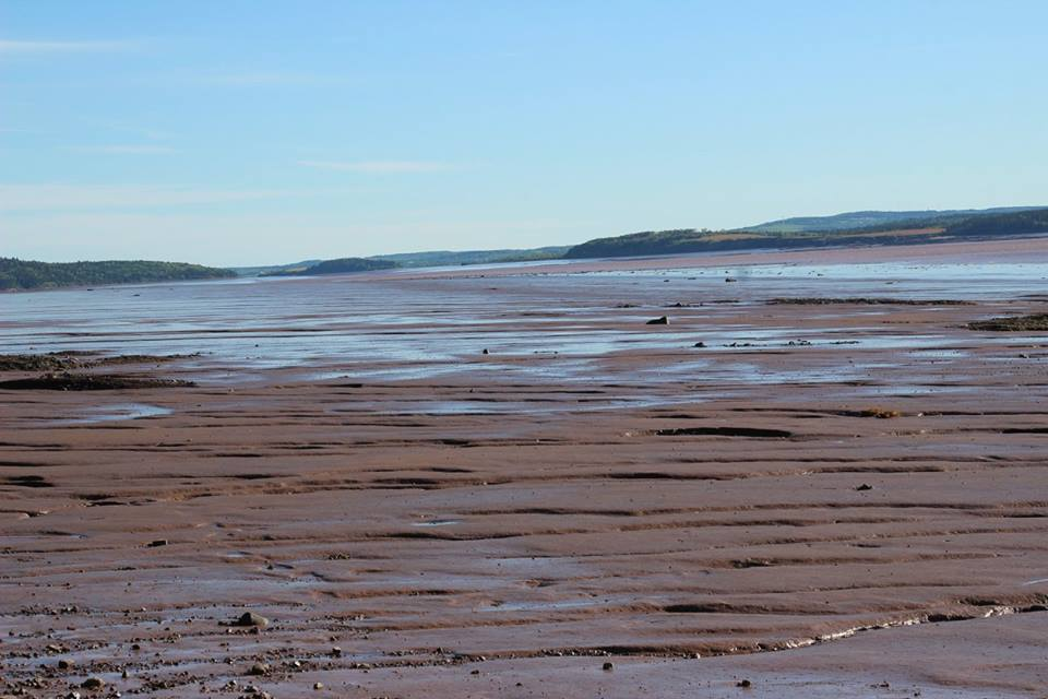 Hopewell Rocks is a must-see place in New Brunswick