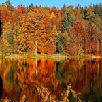 9 Best Canadian Destinations to Travel to in the Fall