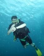 Tauchen auf Aruba.
