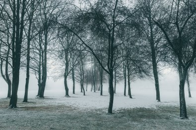 Moody-Adventure-Landscape-Fog-Photography-0001