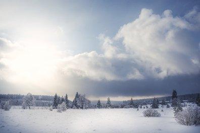 polleuer-venn-hohes-venn-hautes-fagnes-landschaftsfotografie