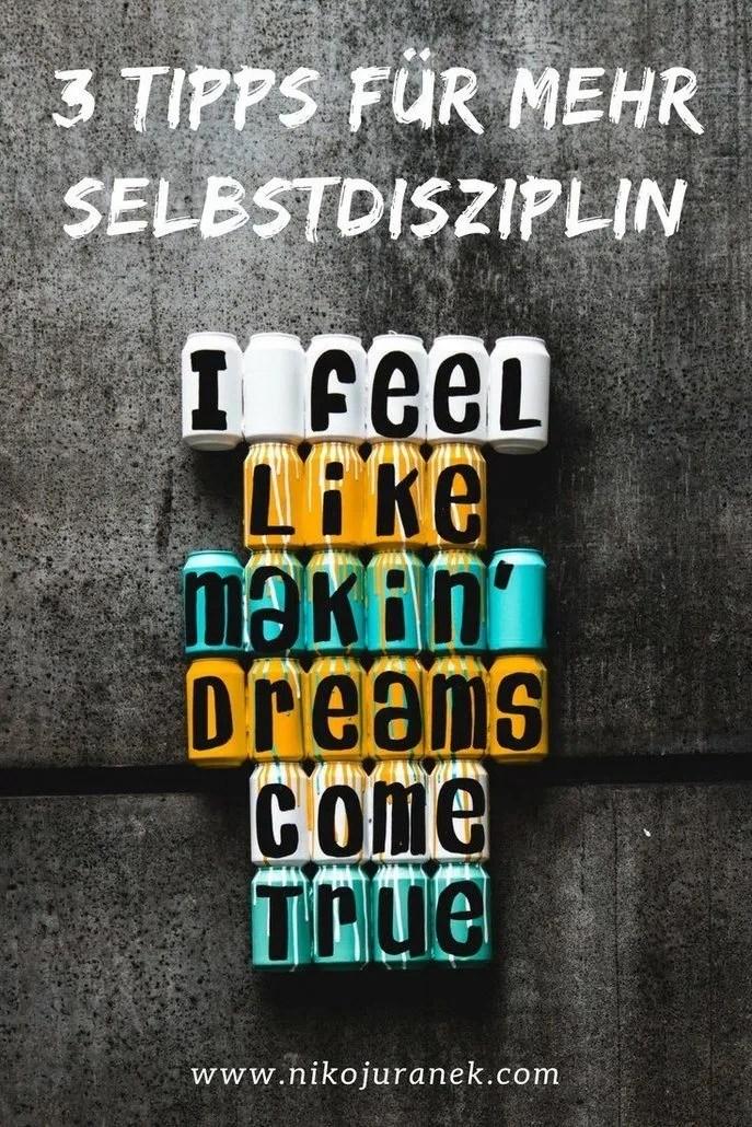 Wie-erreiche-ich-mehr-Selbstdisziplin-Niko-Juranek-Selbstbewusstsein-High-Performance-Persönlichkeitsentwicklung-Blog (2)