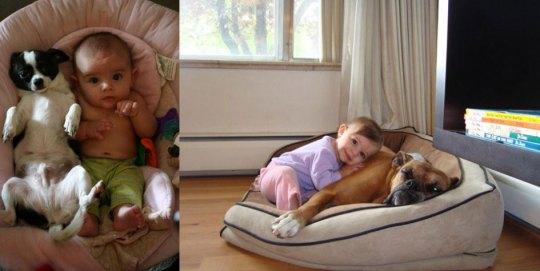 Τα παιδιά πρέπει να συναναστρέφονται με ζωάκια, ΠΑΙΔΙΑ, ΖΩΑ, PAIDIA, ANIMALS, ΤΟ BLOG ΤΟΥ ΝΙΚΟΥ ΜΟΥΡΑΤΙΔΗ, nikosonline.gr