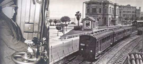 1950_M