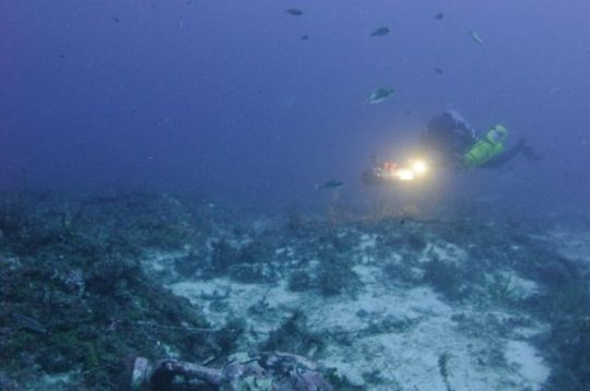 wreck_site_diver