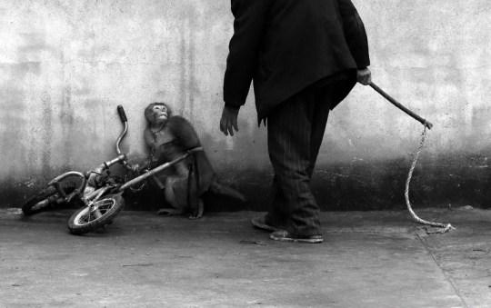 PHOTOGRAPHY, ΦΩΤΟΓΡΑΦΙΑ, World Press Photo, Mads Nissen, ΠΑΓΚΟΣΜΙΑ ΒΡΑΒΕΙΑ ΦΩΤΟΓΡΑΦΙΑΣ, ΤΟ BLOG ΤΟΥ ΝΙΚΟΥ ΜΟΥΡΑΤΙΔΗ, nikosonline.gr