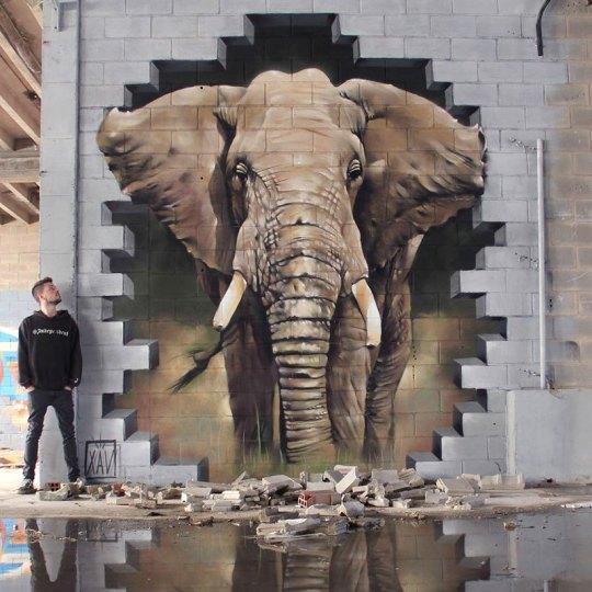 elephant-street-art-graffiti-by-xav