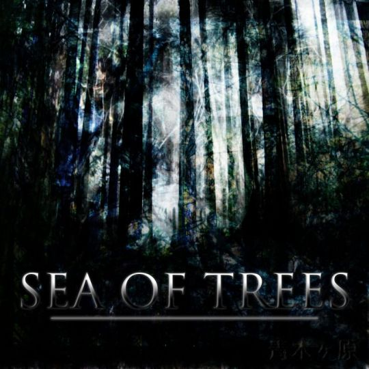 sea-of-trees-movie-2015