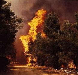Fire, Πυρκαγιές στην Πελοπόννησο