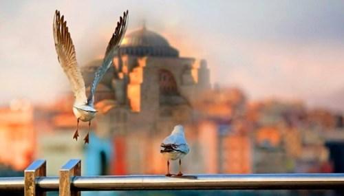 Ναός Αγίας Σοφίας, Temple- Ag. Sofia, Istanbul, ΤΟ BLOG ΤΟΥ ΝΙΚΟΥ ΜΟΥΡΑΤΙΔΗ, nikosonline.gr,