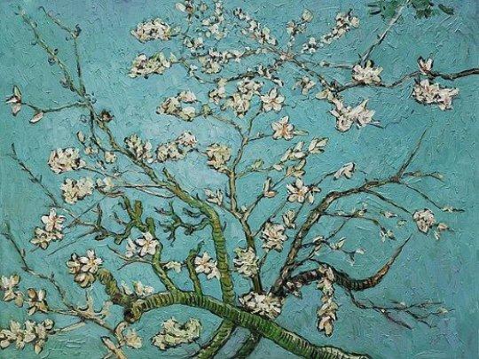 Vincent Van Gogh, Βίνσεντ Βαν Γκονγκ, Ολλανδία, ζωγράφος, εικαστικά, zografiki, Holland, nikosonline.gr