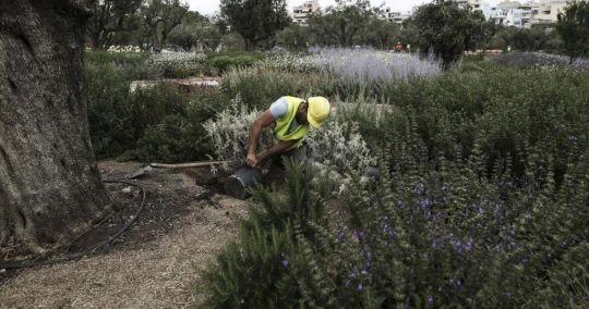 European Garden Award, ΚΠΙΣΝ, Idrima Stavros Niarhos, Kipos, Parko, vraveio, nikosonline.gr