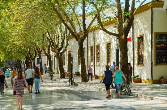 ΑΛΒΑΝΙΑ, ΤΙΡΑΝΑ, ALBANIA, TIRANA, nikosonline.gr
