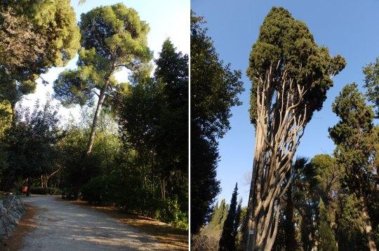 Ντροπή, Αίσχος, Ethnikos Kipos, National Garden, Athens, Εθνικός κήπος Αθήνας, nikosonline.gr