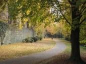 Herbst an der Soester Stadtmauer