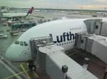 zurück in Frankfurt