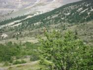 Ein roter Farbtupfer in der Landschaft