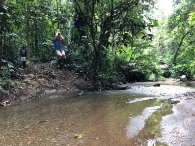 Tarzan lebt!
