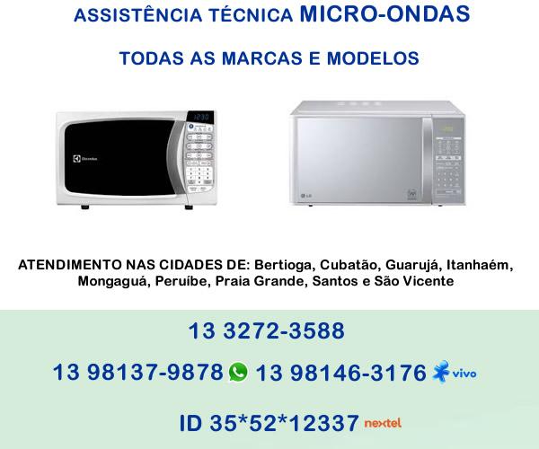assistencia-tecnica-micro-ondas-1