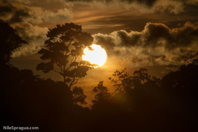 Photo: Sunset over Amazon jungle, near Iquitos, Peru