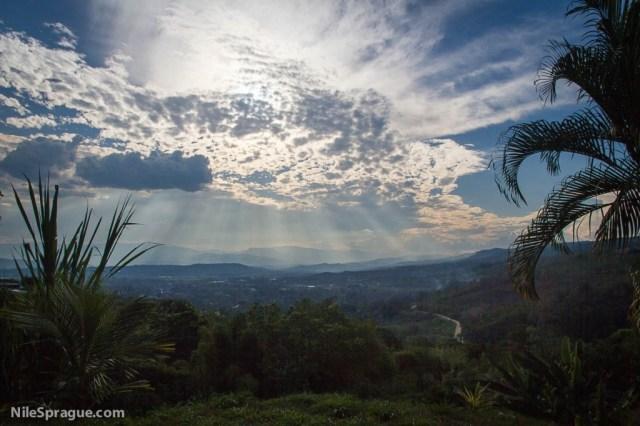 Vista with hills, sun behind clouds and palm fronds, Tarapoto, Peru