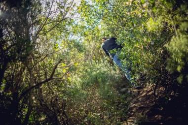 naturpark-arrabida-14