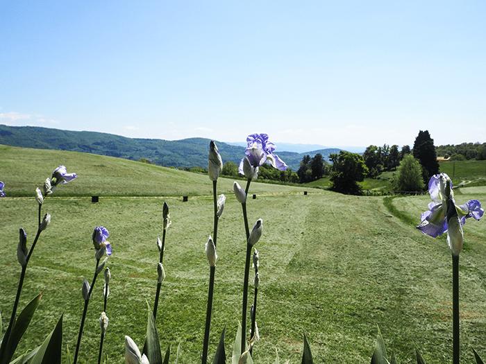 toscana-panorama_tuscany