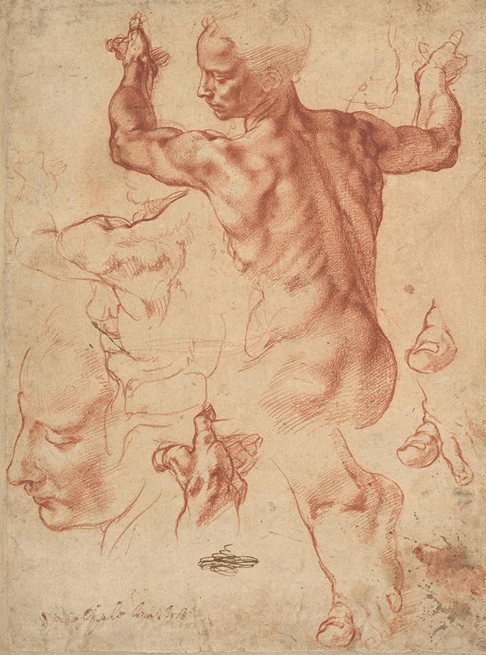 dibujo-Michelangelo-Libyan Sibyl