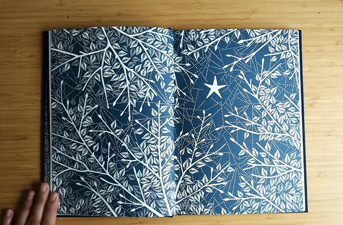 coralie bickford-smith-el zorro y la estrella-3