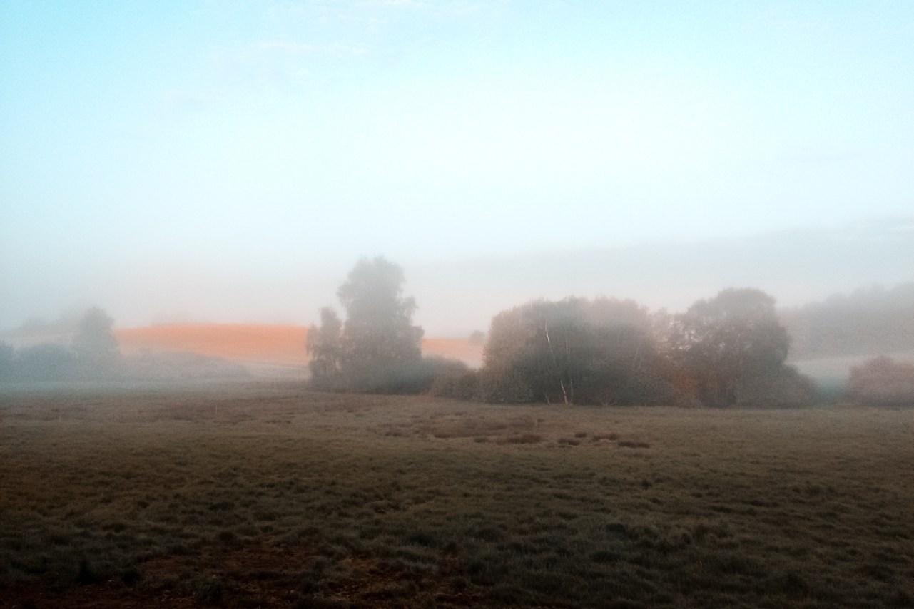 Nina Marquardsen Fotografi - Amning - morgen dis