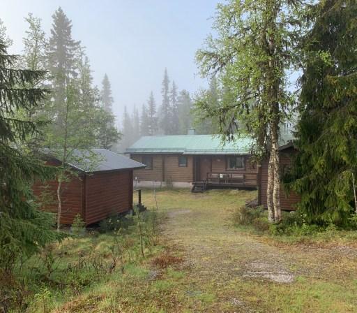Nina Marquardsen Morgendis i hytten