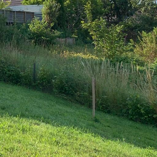 Nina Marquardsen - pind i haven