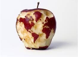 cibo mondo 1