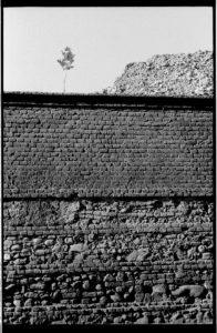 La Vie arriere le mur