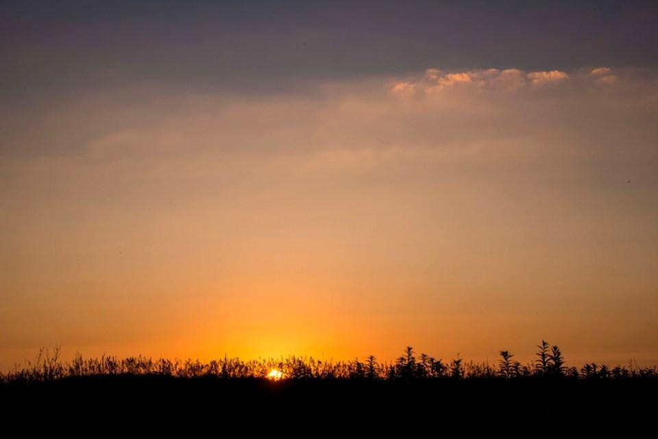 Dawn on August 18, 2013