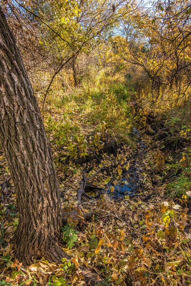 Fall at the Wet Spot - Wide Shot