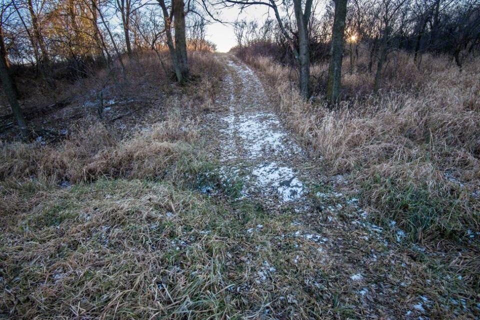 Light Snow on the Beaten Path