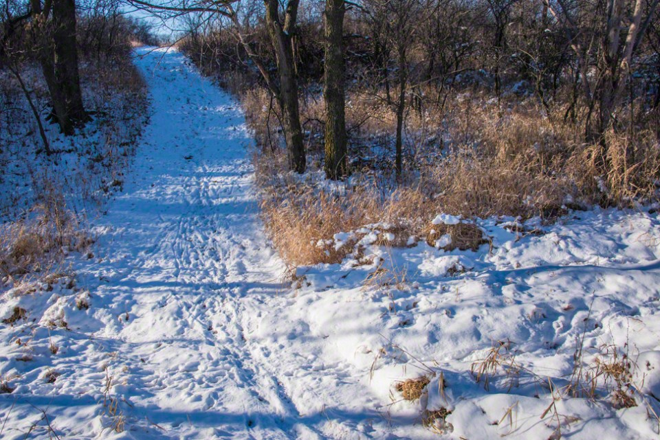 Snow Covered Path Crossing the South Draw
