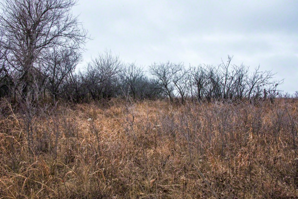 Stark Gray Edge Marching Onto the Prairie