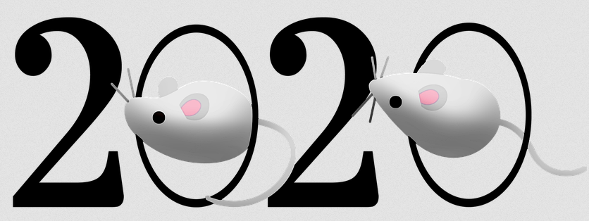 Chinese Year of the Rat 2020