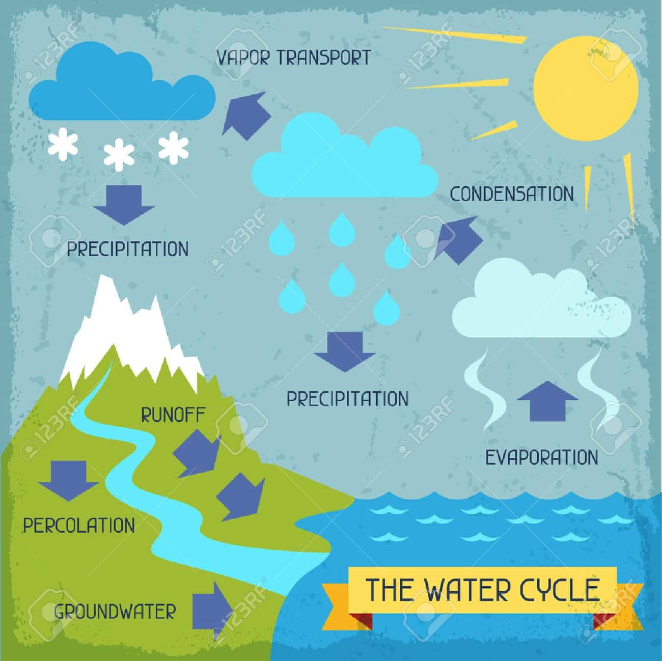 The Water Cycle Poster With Nature Infographics In Flat Style Stock Photo